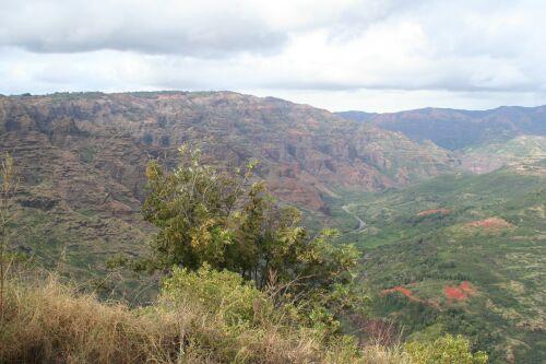 grand canyon du pacifique